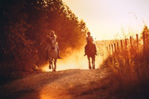 Beginner's Guide for Horseback Riding