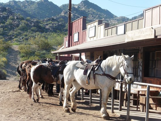 Horseback Riding in Phoenix, Best Stables and Trails